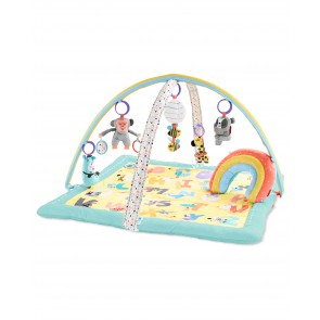 Skip Hop - ABC & Me Activity Gym